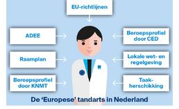 Aspecten van de 'Europese' tandarts in Nederland