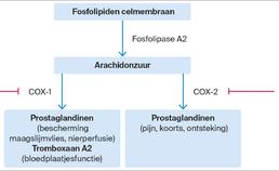 Werkingsmechanisme van NSAID's