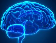 Serie: Psychische stoornissen in de mondzorgpraktijk. Patiënten met psychische aandoeningen in de tandartspraktijk – een inleiding