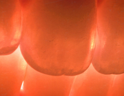 Dgitale technologie in de restauratieve tandheelkunde